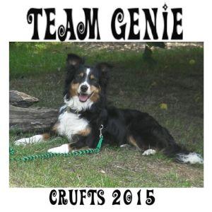 Team Genie